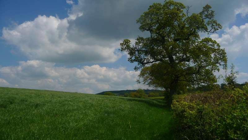 Local-walk-near-Bonhays-Meditation-and-Retreats.jpg