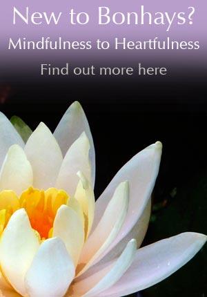 New to Bonhays - Mindfulness to Heartfulness