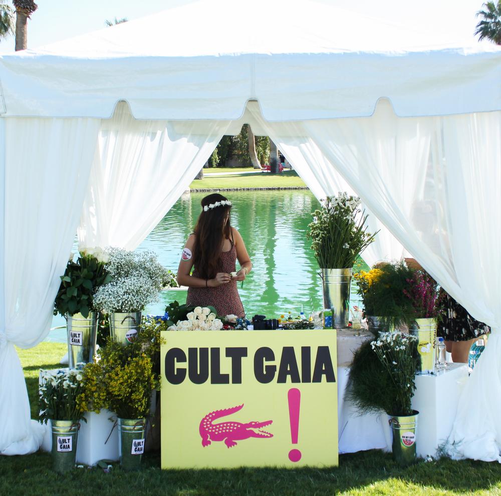 Cult-Gaia.jpg