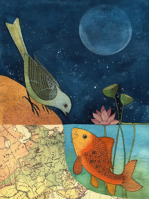 fishandbird