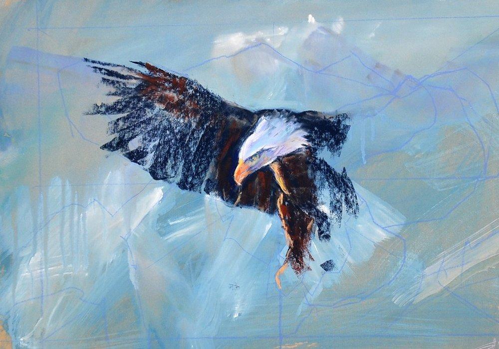 Pastel eagle 2.JPG