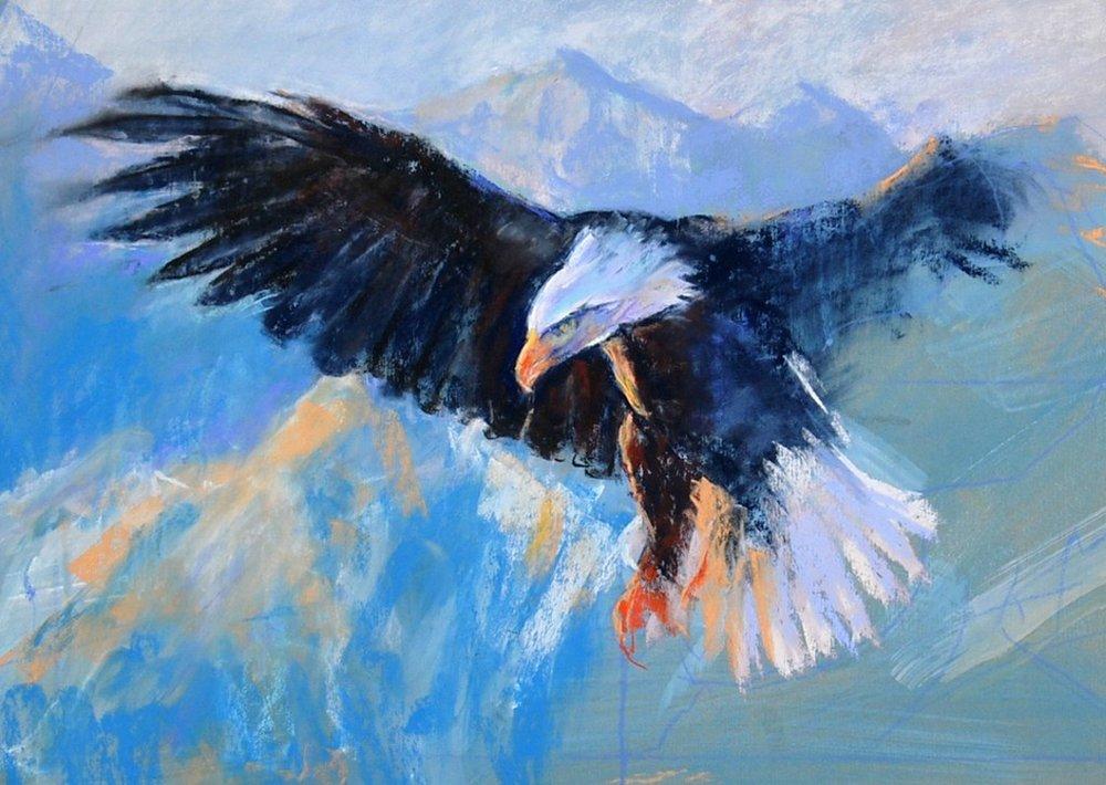 Pastel eagle 3.JPG