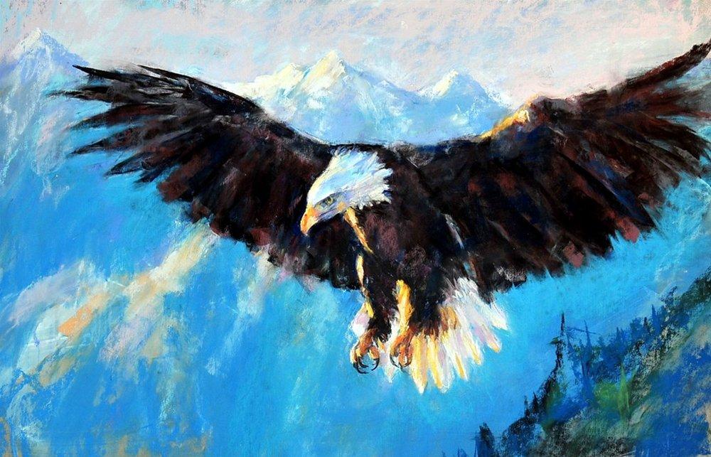 Pastel eagle 4.JPG