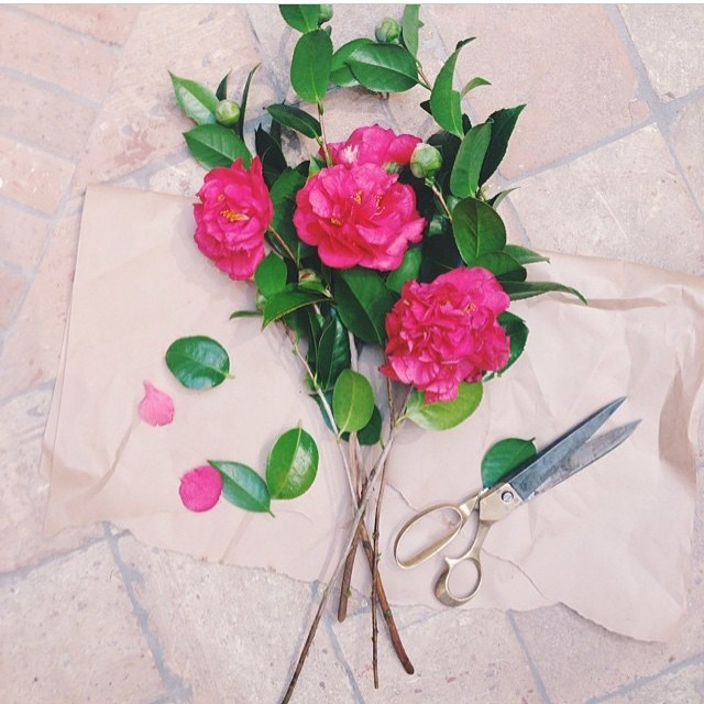 You have yourself a lovely Saturday 🌸 #flowermarkets #gardenlife #bouquet