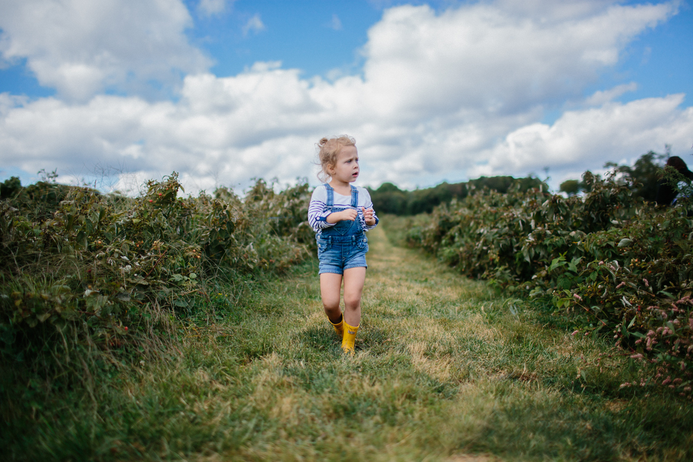 Apple Picking 2013 FB-10.jpg