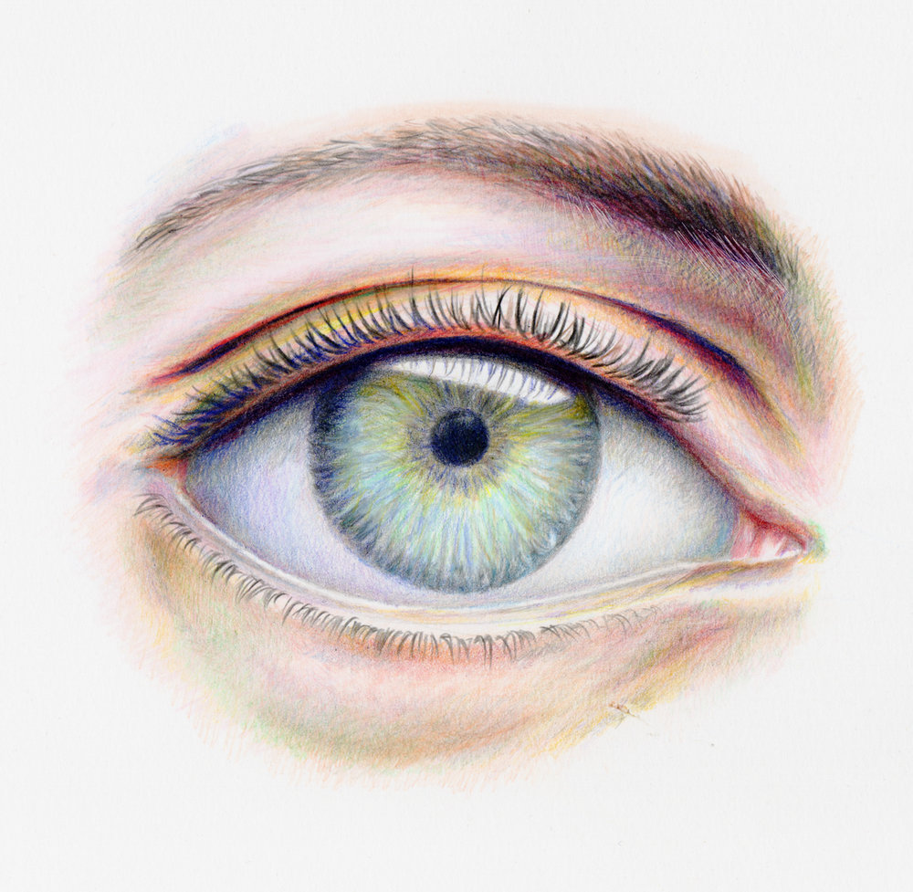 """""""Eyed"""" 10 x 10 inches. Color pencil. 2017"""