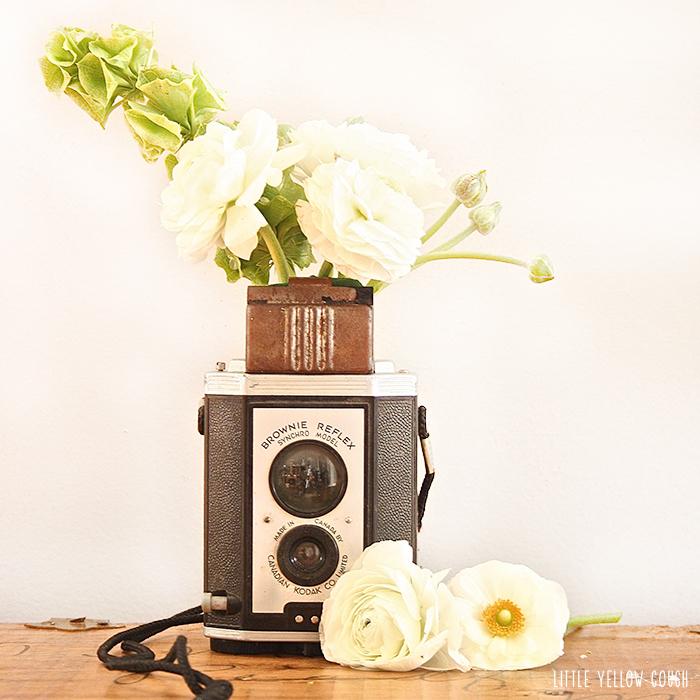 CameraFlowers3.jpg