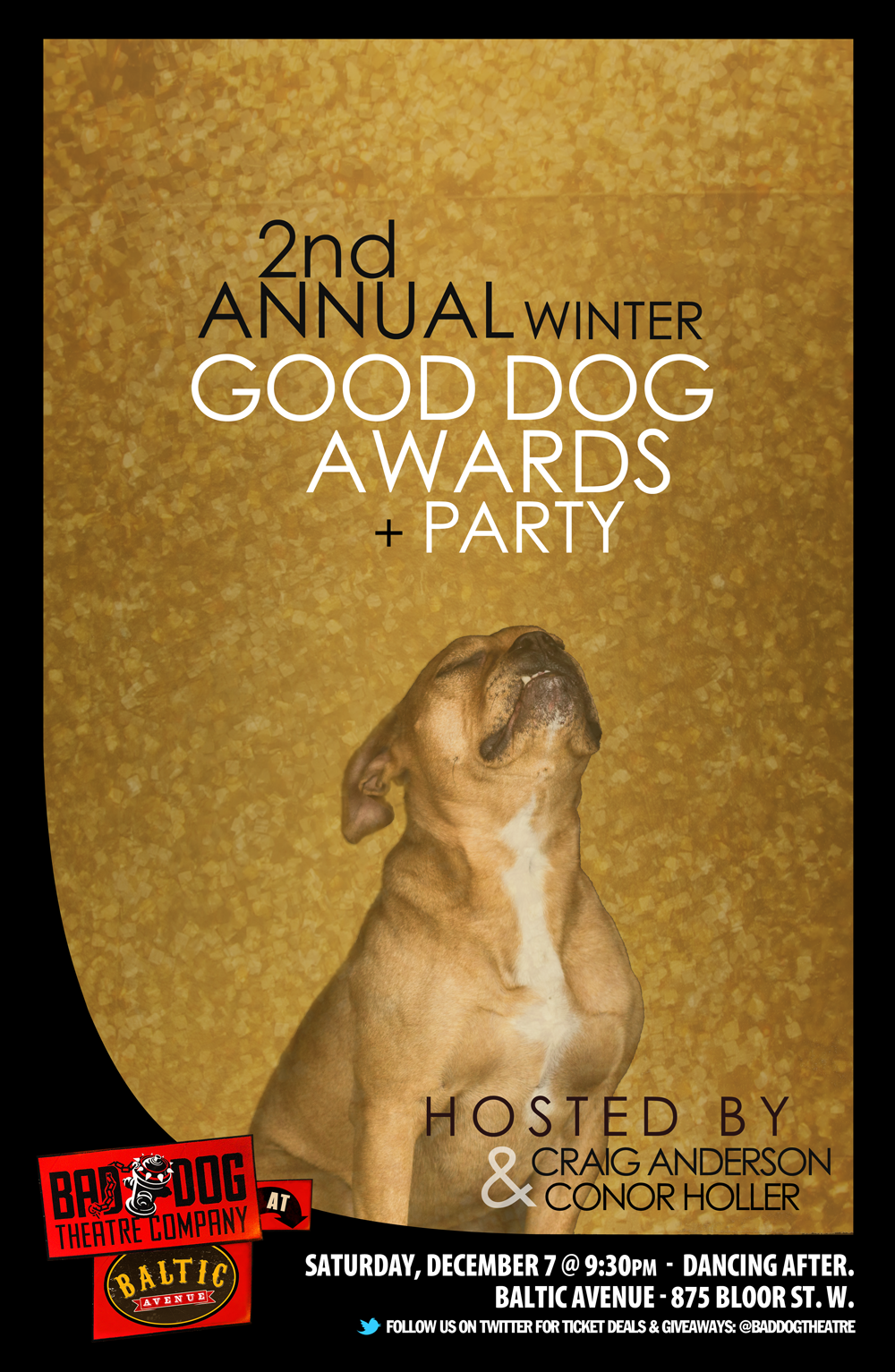 winter-good-dogs-2013.png