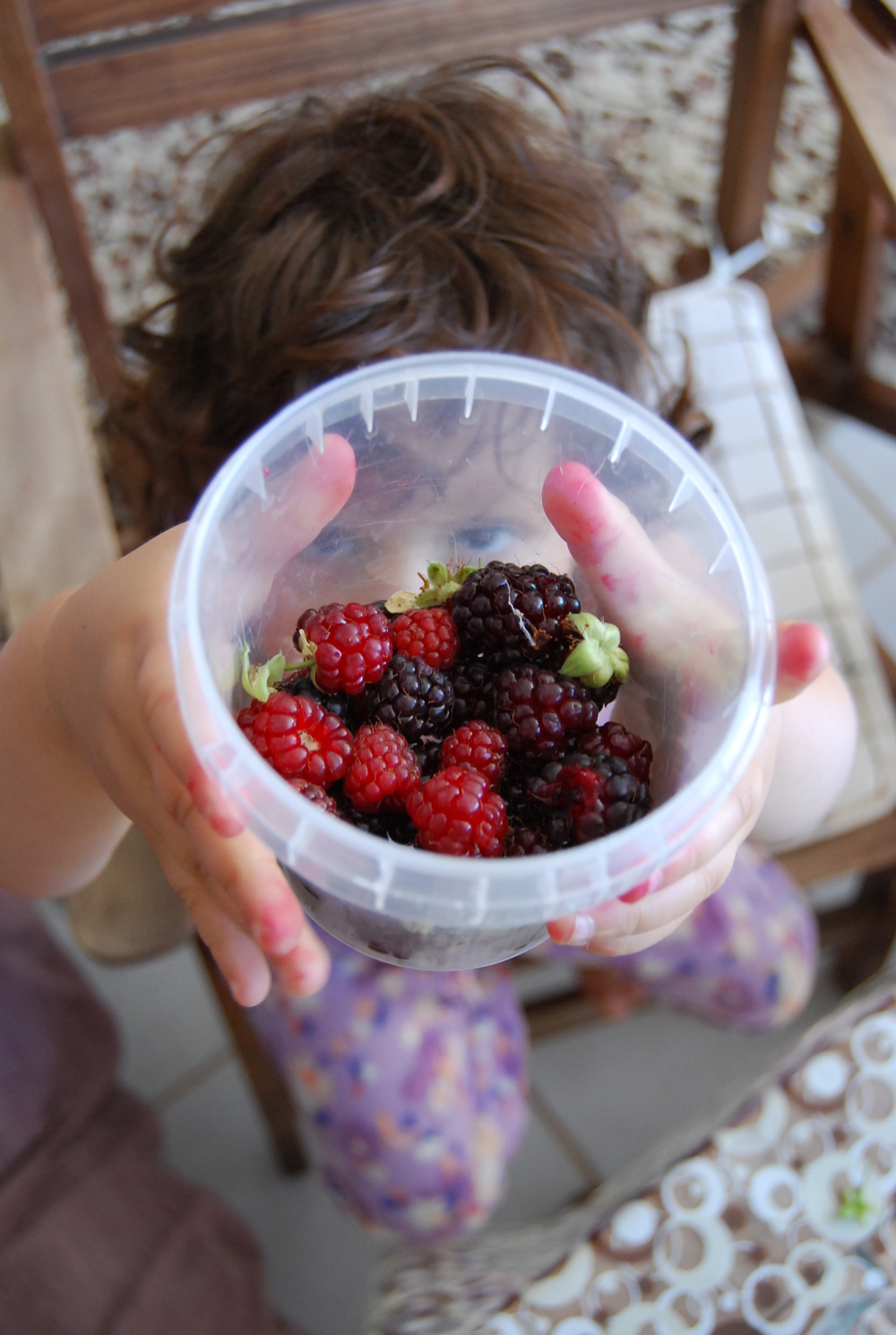 raspberries in turkey 001.JPG