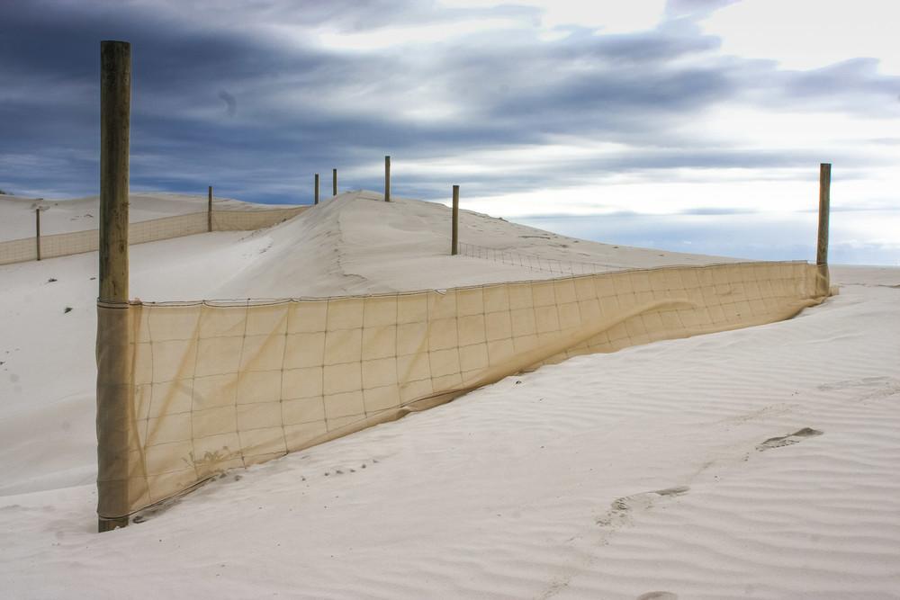 Establishment of fencing to reduce sand dune movement
