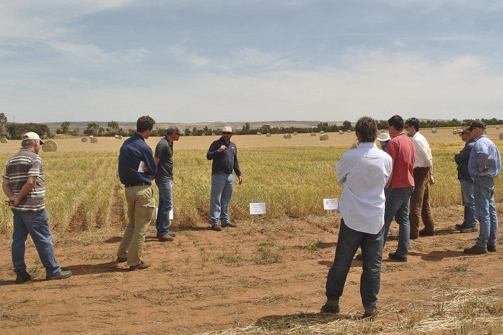 Biochar-Field-Day-2013-0640.jpg