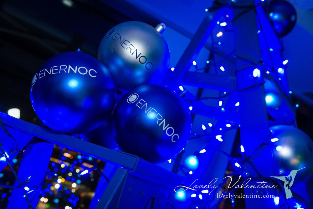 enernoc-49.jpg