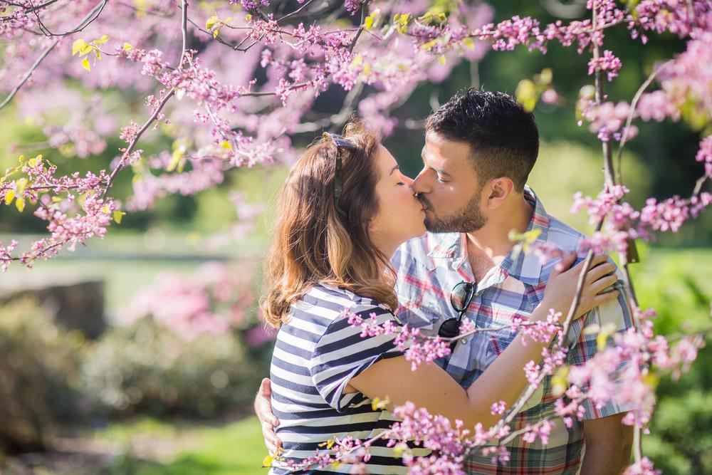 arboretum-engagement-2