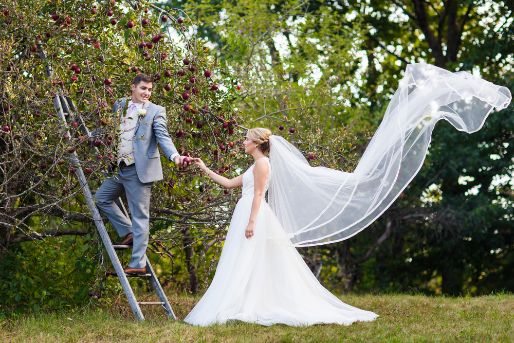 apple-orchard-wedding-harvard-27