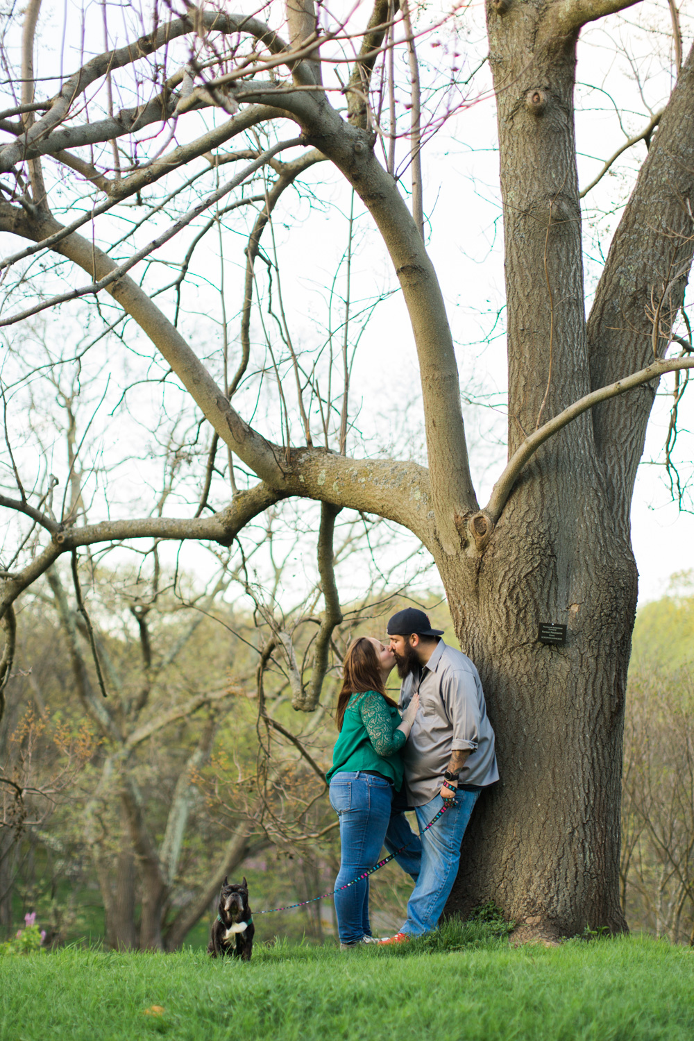 arnold arboretum engagement photographer boston