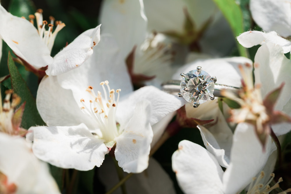 Worlds End Engagement Photos Wedding Ring
