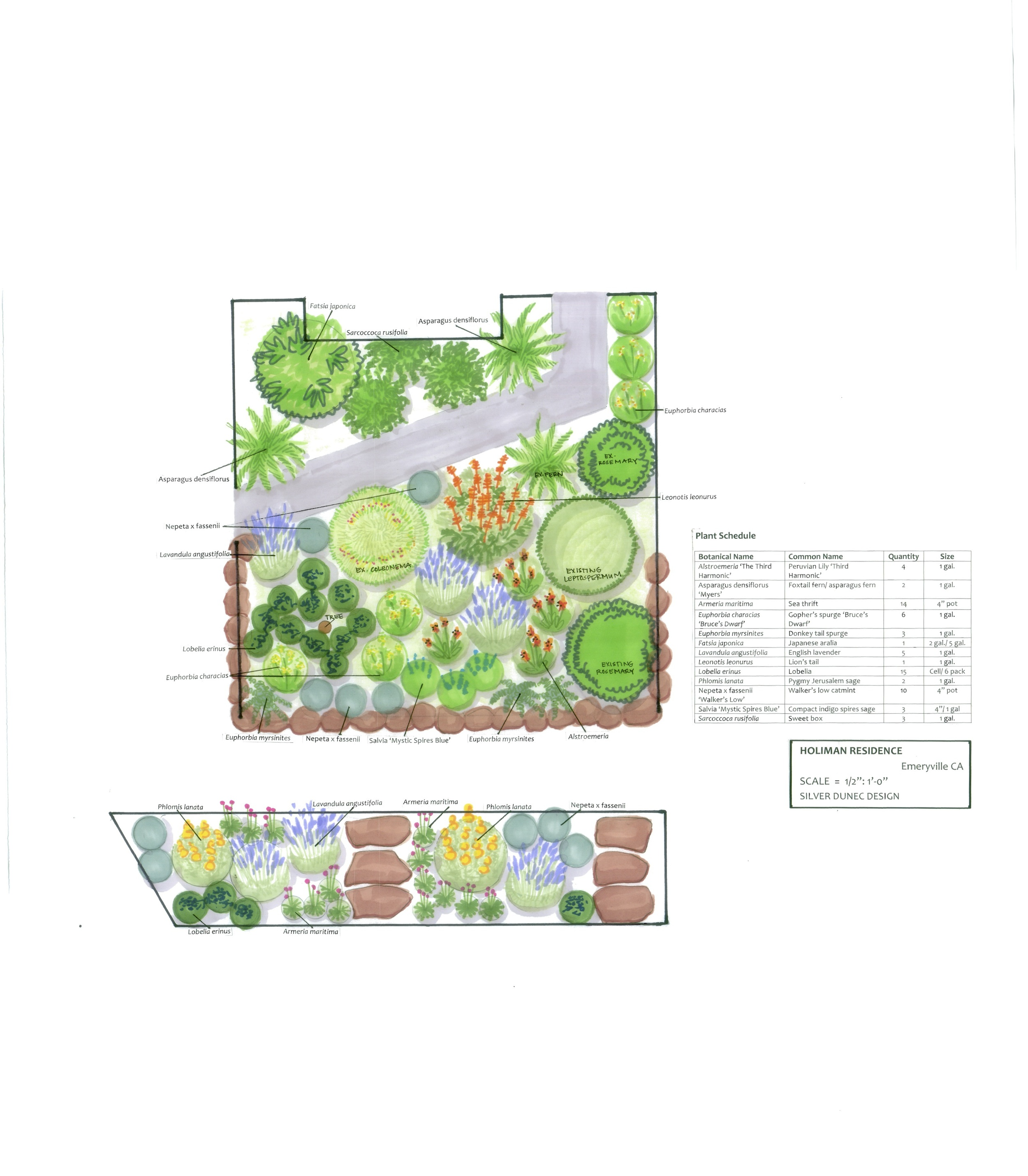 Waterwise Garden Design Emeryville Waterwise Garden  Lauren Dunec Design