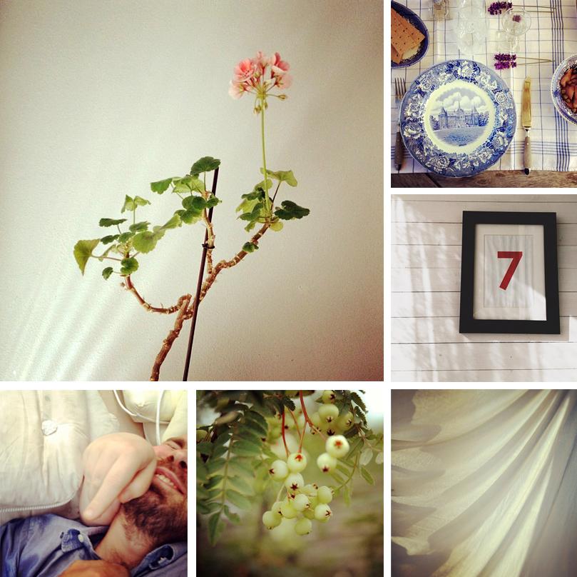 [ 2012 via Instagram ] Försommar