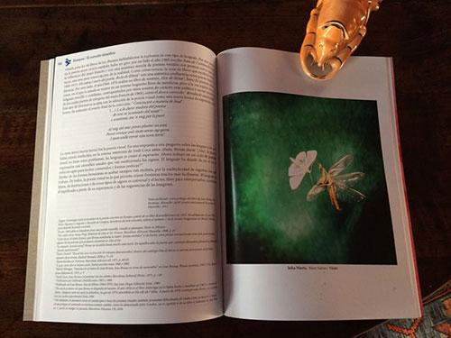 5Canibaal-Art-magazine.jpg