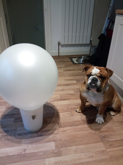 1. Get massive balloon
