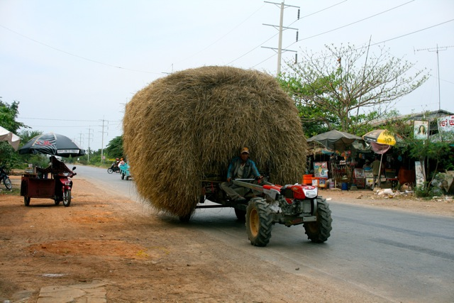 Haybale on wheels (western Cambodia)