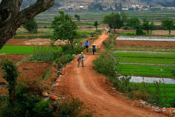 In southern Yunnan province you certainly can't accuse the Chinese of being lazy!