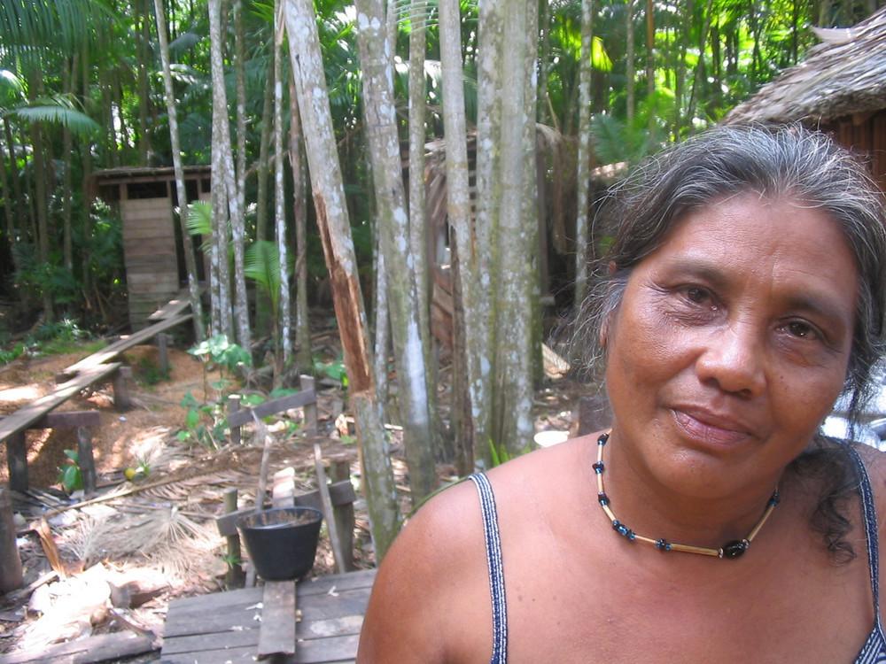 Amazon delta, Ilha de Marajo, 2003