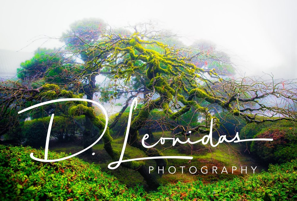 00171_January 25, 2015_Japanese Garden-Edit-2.jpg