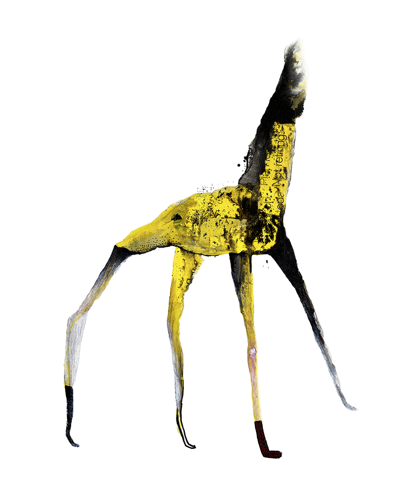 Charles The Giraffe – 2008