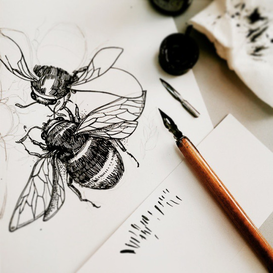 The study of bees