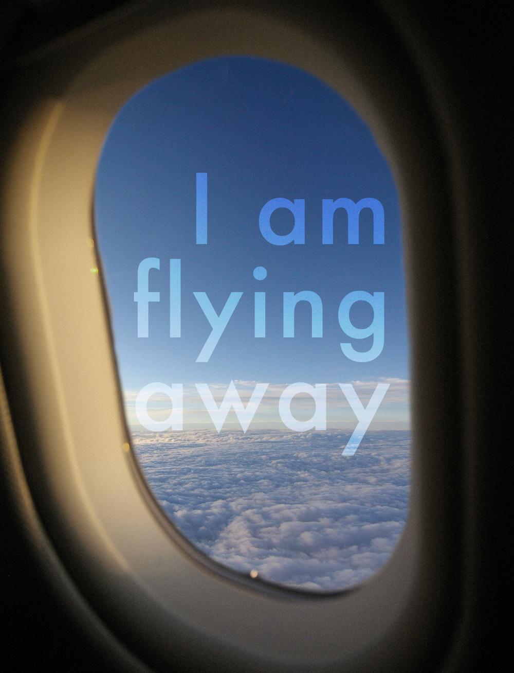 MeganLittle_flyaway.jpg