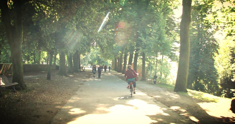 meganlittle_bikelucca2.jpg