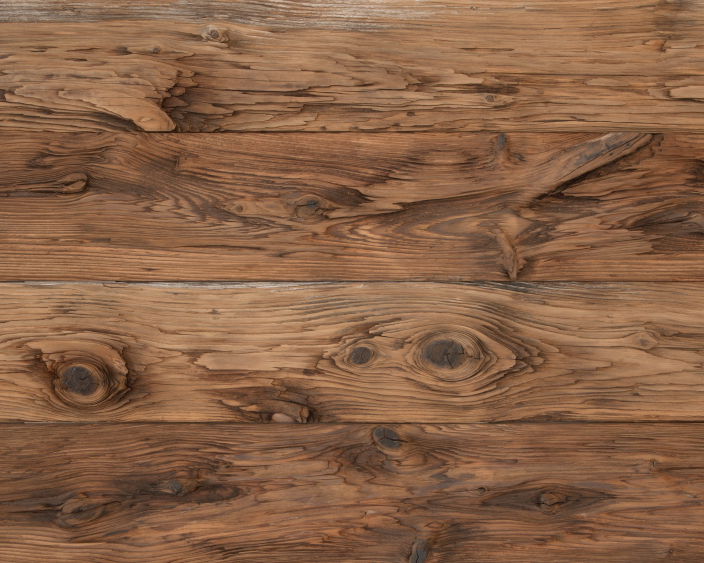 Mushroom Wood > Fisher & Paykell LA Showroom