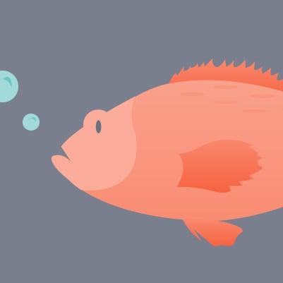 thumb_fish.jpg