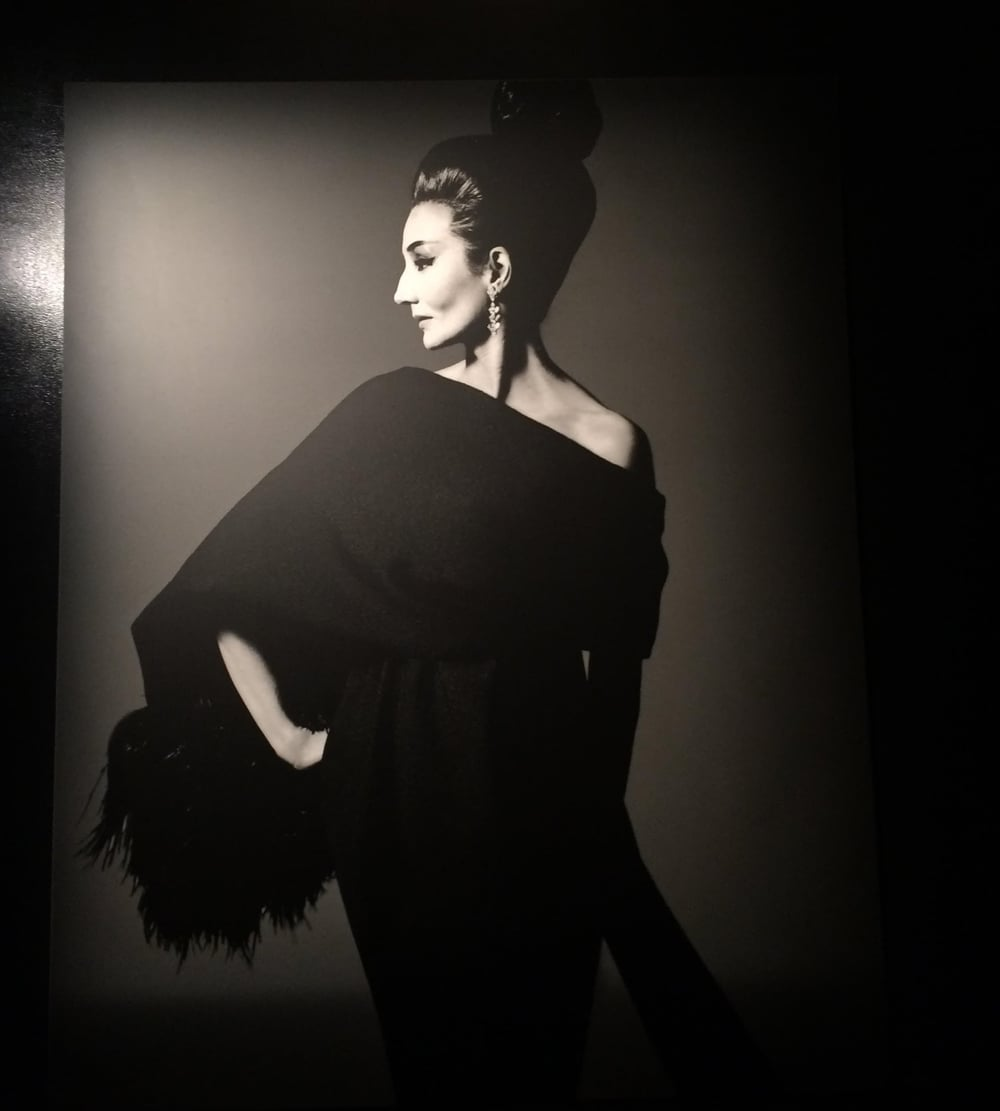 Comtesse Jacqueline de Ribes in Yves Saint-Laurent, by Richard Avedon | Paris, 1962.