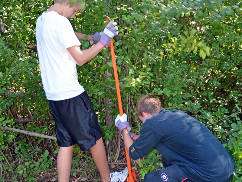 students remove buckthorn.jpg