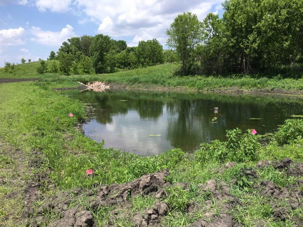 A recently completed water storage wetland portion of a treatment train