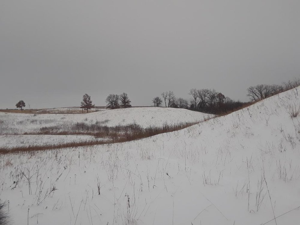 Lost Valley Prairie SNA. All the DNR IP's got a tour of two local SNA's during our second week on the job. Lots of tromping through snow made for a soggy but fun day.