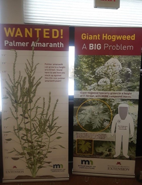 Terrestrial noxious weed banners. Palmer Amaranth is already invading farm fields in southern MN. Giant hogweed is not known to be in the state.