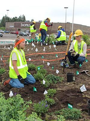 Youth Crew in Aitkin MInnesota, planting a garden off of highway roundabout. Picture via  Aitkin Independent Age .