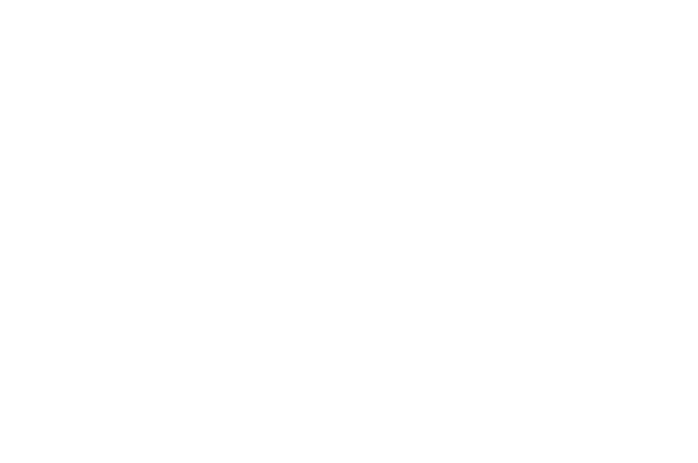 OFFICIAL SELECTION - Muscatine Independent Film Festival - 2018.png