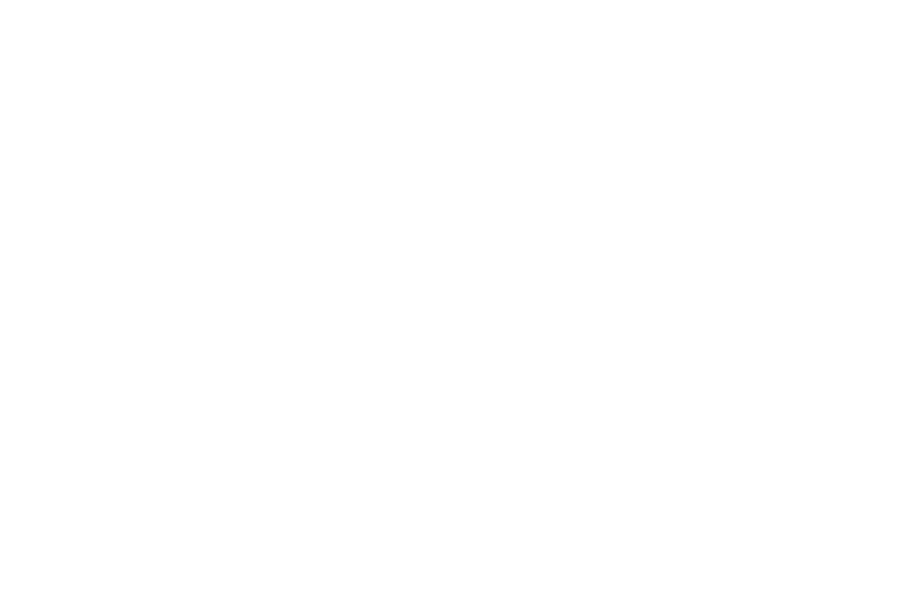 OFFICIAL SELECTION - South Carolina Underground Film Festival - 2018.png