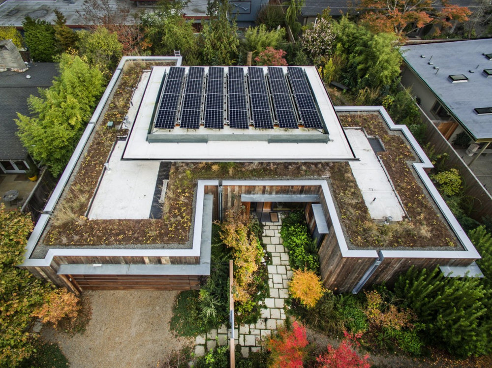 Photovoltaic panels sit atop the roof, surrounded by Northwest sedums, grasses, and wild strawberries.