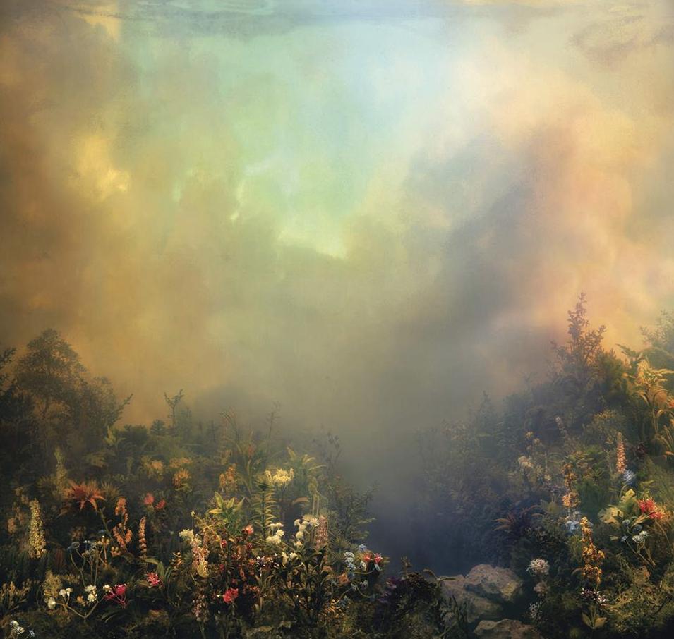 album cover for Joanna Newsom's Divers.