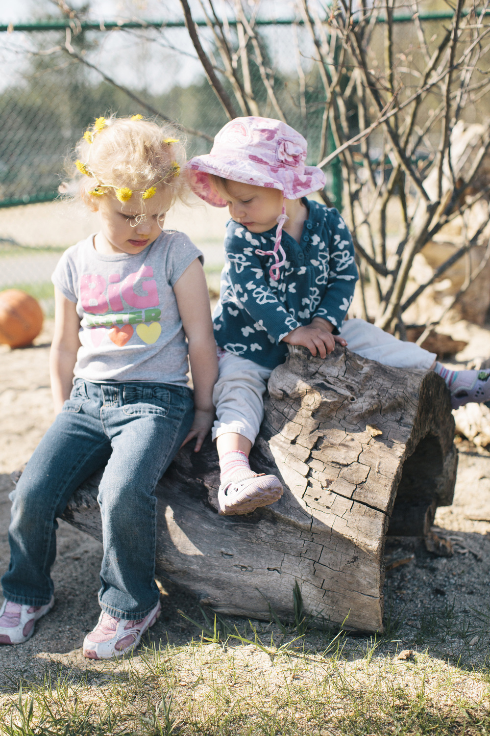 Toddlers sitting log 0011.jpg
