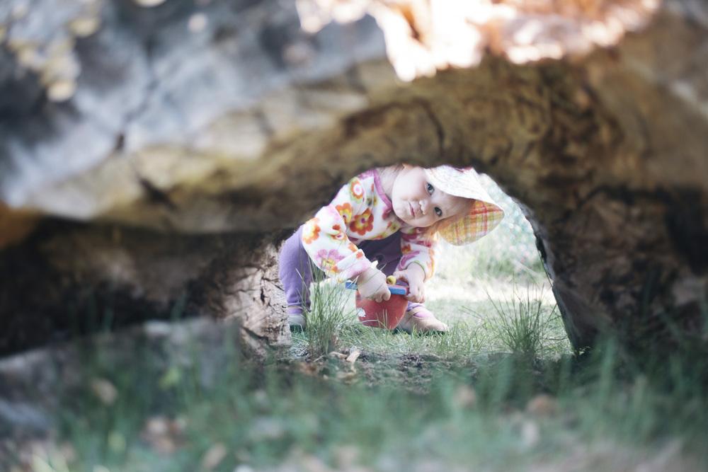 Toddler V under log 0015.jpg