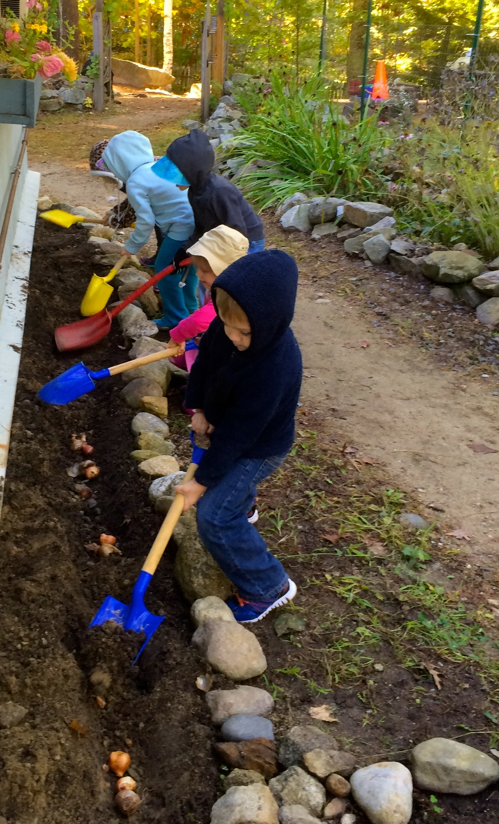 PURPOSEFUL WORK - Planting Bulbs