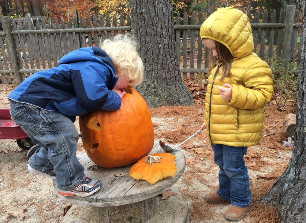 Toddlers scooping out seeds for their jack-o-lantern