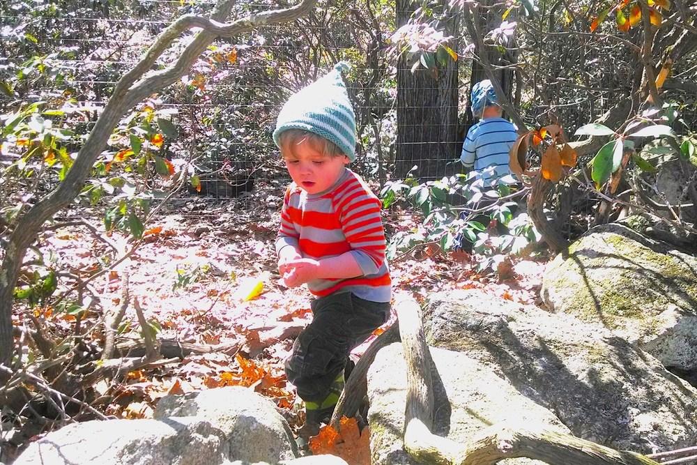 OUTDOOR ADVENTURES - Exploring the little woods