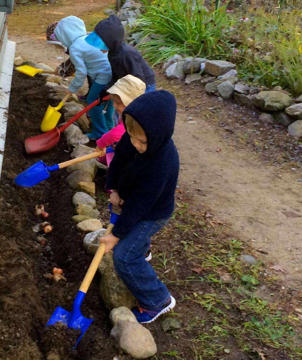 PURPOSEFUL WORK - Planting Bulbs